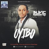 Buvic Assorted - Oyibo