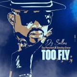 Dj Sallas feat Tzy Panchak x Stanley Enow - Too Fly
