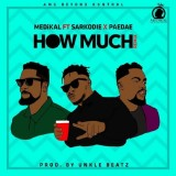 Medikal Ft Sarkodie x Paedae - How Much (Remix)